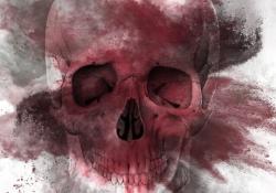 skull-768x1133-df1c6cc694004bbb30ac31c03e5a6a21f1c75cf8
