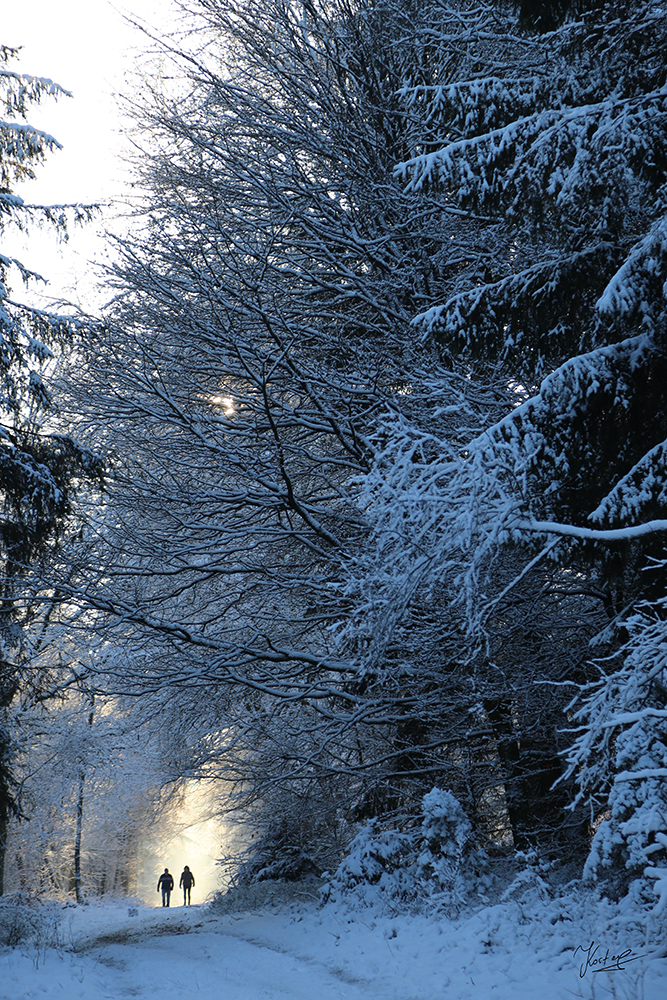 Kostas_Winter