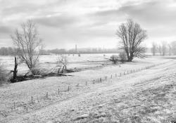 winter-wonderland-f65ab90fcf1c141a4dadbd13ebae1a94bb925ba9